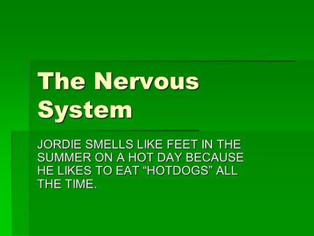 "The Nervous System JORDIE SMELLS LIKE FEET IN THE SUMMER ON A HOT DAY BECAUSE HE LIKES TO EAT ""HOTDOGS"" ALL THE TIME."