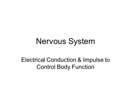 Nervous System Electrical Conduction & Impulse to Control Body Function.