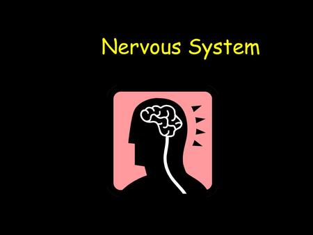 Nervous System. Learning Outcomes Understand the role of the Nervous System Understand what Stimuli, Receptors and Effectors are Understand what the role.