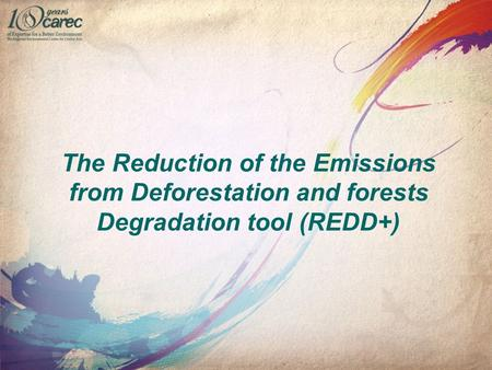 The Reduction of the Emissions from Deforestation and forests Degradation tool (REDD+)