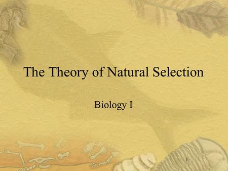 1 The Theory of Natural Selection Biology I. 2 I. Early Biology Scientists knew that organisms had changed Fossil evidence Age of the Earth.