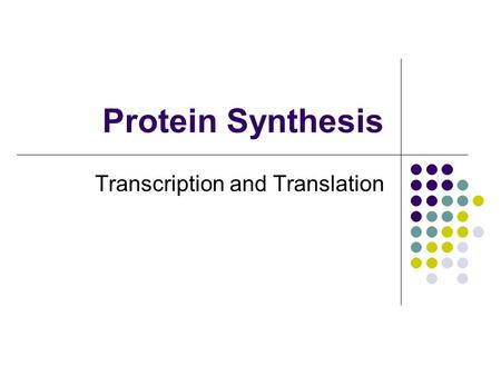 Protein Synthesis Transcription and Translation. The Central Dogma The information encoded with the DNA nucleotide sequence of a double helix is transferred.
