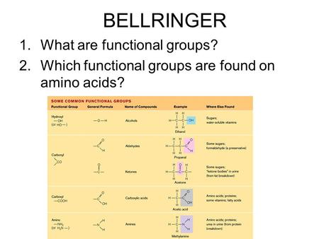 BELLRINGER 1.What are functional groups? 2.Which functional groups are found on amino acids?