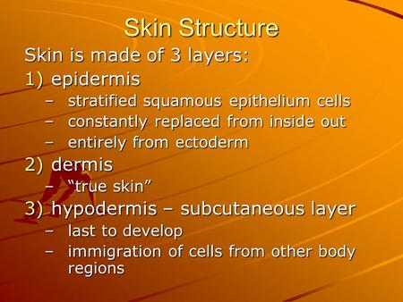Skin Structure Skin is made of 3 layers: 1)epidermis –stratified squamous epithelium cells –constantly replaced from inside out –entirely from ectoderm.
