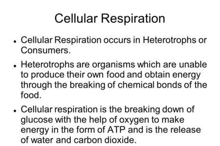 Cellular Respiration Cellular Respiration occurs in Heterotrophs or Consumers. Heterotrophs are organisms which are unable to produce their own food and.