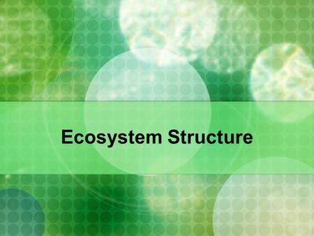 Ecosystem Structure.
