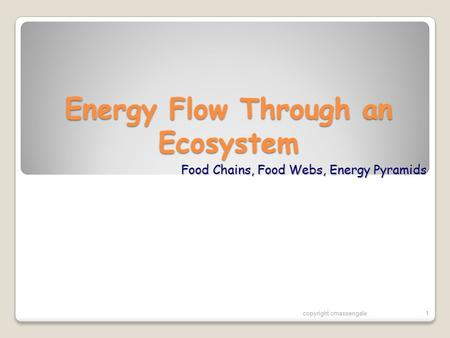 Energy Flow Through an Ecosystem Food Chains, Food Webs, Energy Pyramids copyright cmassengale1.