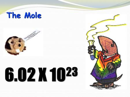 The Mole 6.02 X 10 23. STOICHIOMETRYSTOICHIOMETRY - the study of the quantitative aspects of chemical reactions.