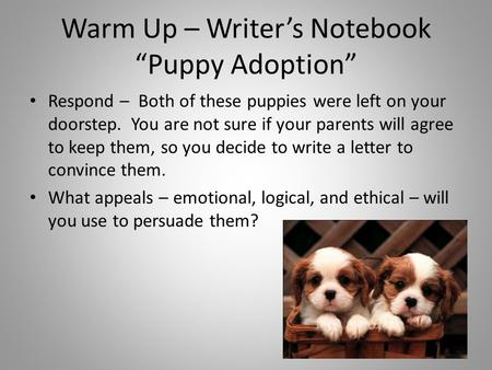 "Warm Up – Writer's Notebook ""Puppy Adoption"" Respond – Both of these puppies were left on your doorstep. You are not sure if your parents will agree to."