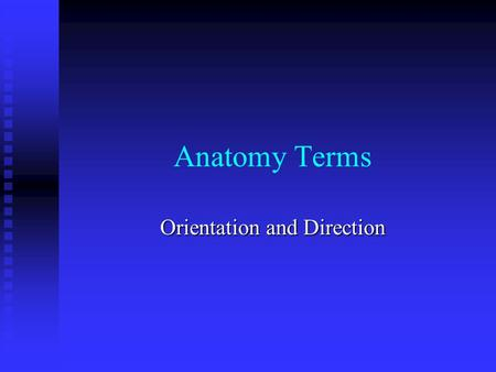Anatomy Terms Orientation and Direction. Superior – towards head Superior – towards head Inferior (caudal) – towards the lower part of a body part Inferior.