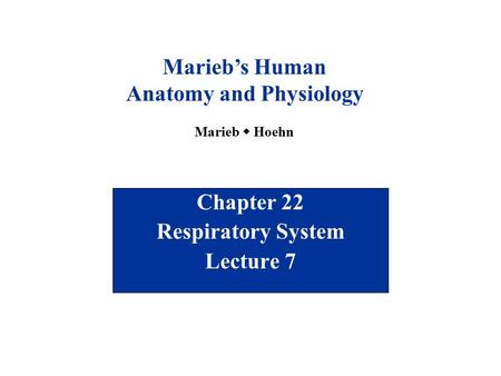 Chapter 22 Respiratory System Lecture 7 Marieb's Human <strong>Anatomy</strong> <strong>and</strong> <strong>Physiology</strong> Marieb  Hoehn.