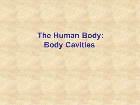 The Human Body: Body Cavities