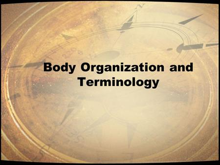 Body Organization and Terminology. Introduction Anatomy –The study of the form and structure of an organism. Physiology – The study of the processes of.