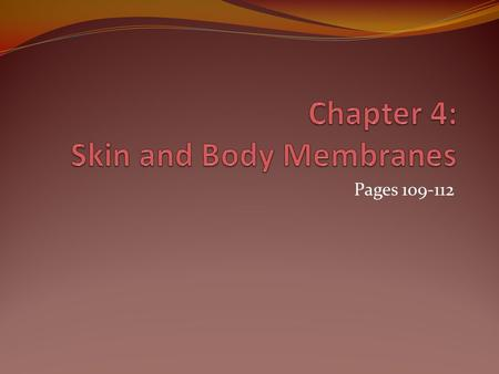 Chapter 4: Skin and Body Membranes