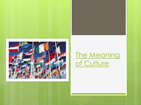 The Meaning of Culture. What is Culture?  All the things that make a people's entire way of life  Food  Traditions  Education  Clothes  Music 