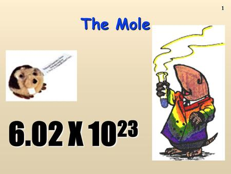 1 The Mole 6.02 X 10 23 2 AVOGADRO'S NUMBER AND MOLAR CONVERSIONS TEXTBOOK PAGE 224 READ P 224 TO 228 DO PRACTICE QUESTIONS 1 TO 4 PAGE 228.