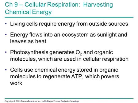 Ch 9 – Cellular Respiration: Harvesting Chemical Energy
