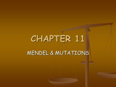 CHAPTER 11 MENDEL & MUTATIONS Father of Genetics  Monk <strong>and</strong> teacher.  Experimented with purebred tall <strong>and</strong> short peas.  Discovered some of the basic.
