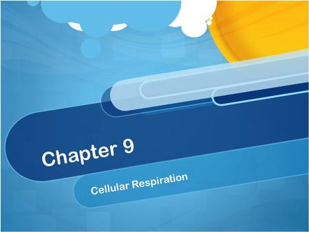 Chapter 9 Cellular Respiration. I CAN'S/ YOU MUST KNOW The difference between fermentation & cellular respiration The role of glycolysis in oxidizing.