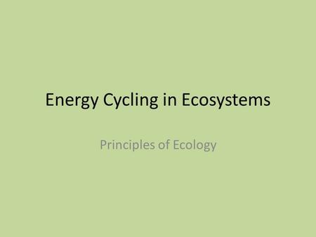 Energy Cycling in Ecosystems Principles of Ecology.