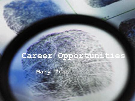 Career Opportunities Mary Tran. Why a career search is important… To provide a stable income To give yourself fulfillment in life To broaden your education.