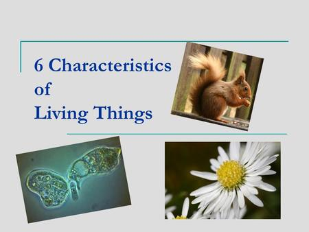 6 Characteristics of Living Things. 1. Living Things Have 1 or More Cells. Every organism is made up of one or more cells one-celled organisms are called.