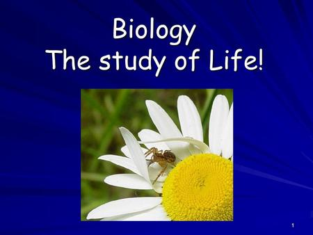 Biology The study of Life!