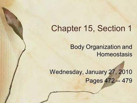 Chapter 15, Section 1 Body Organization and Homeostasis