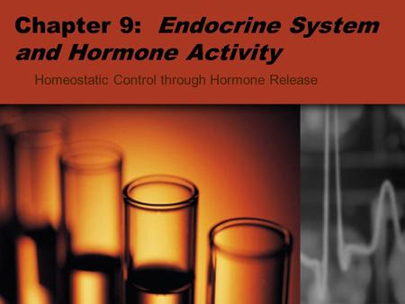 Chapter 9: Endocrine System and Hormone Activity Homeostatic Control through Hormone Release.