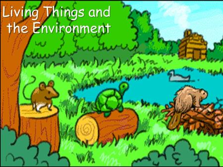 Living Things and the Environment. Key Words Habitat Biotic Factors Abiotic Factors Populations Species Community Single Organism Ecology.