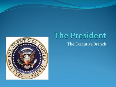 The President The Executive Branch.