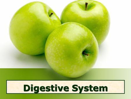 Digestive System. Digestive System Rap Job of Digestive System Break down food (macromolecules) into nutrients & energy.