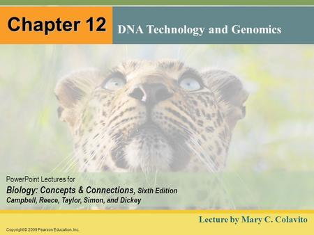 Copyright © 2009 Pearson Education, Inc. <strong>PowerPoint</strong> Lectures for Biology: Concepts & Connections, Sixth Edition Campbell, Reece, Taylor, Simon, and Dickey.