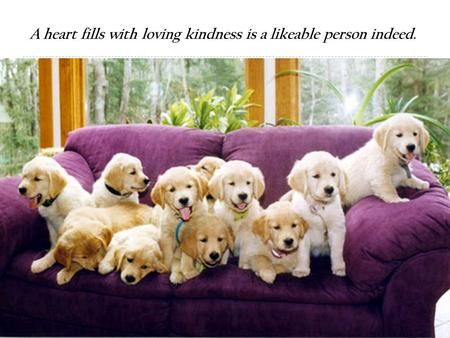 1 A heart fills with loving kindness is a likeable person indeed.