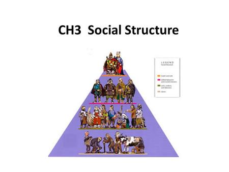CH3 Social Structure.