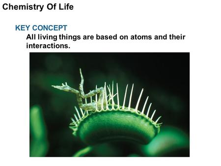Chemistry Of Life KEY CONCEPT All living things are based on atoms and their interactions.