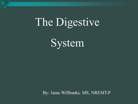 By: Jama Willbanks, MS, NREMT-P The Digestive System.