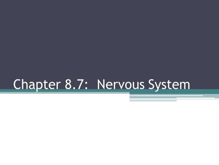 Chapter 8.7: Nervous System. Limbic System Establishes emotion and behavior Links conscious with autonomic Long-term memory storage and retrieval Makes.