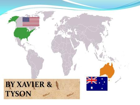 BY XAVIER & TYSON. Historical background to the relationship Australia is Americas closest ally in the Asia-Pacific region Australia is the second most.