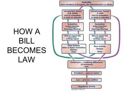 how a bill becomes law - How A Bill Becomes A Law Worksheet