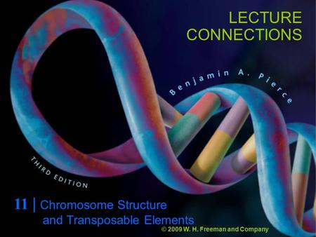 LECTURE CONNECTIONS 11 | <strong>Chromosome</strong> Structure © 2009 W. H. Freeman and Company and Transposable Elements.