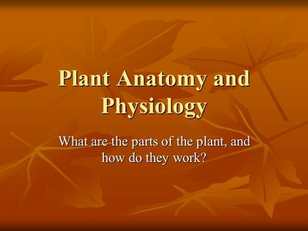 Plant Anatomy and Physiology What are the parts of the plant, and how do they work?