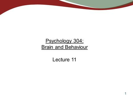 1 Psychology 304: Brain and Behaviour Lecture 11.