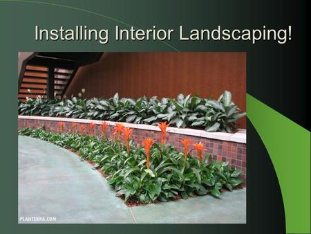 Planning and Preparing a Vegetable Garden Site - ppt video