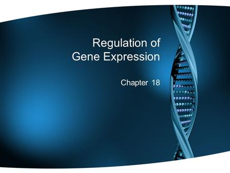 Regulation of Gene Expression Chapter 18. Warm Up Explain the difference between a missense and a nonsense mutation. What is a silent mutation? QUIZ TOMORROW: