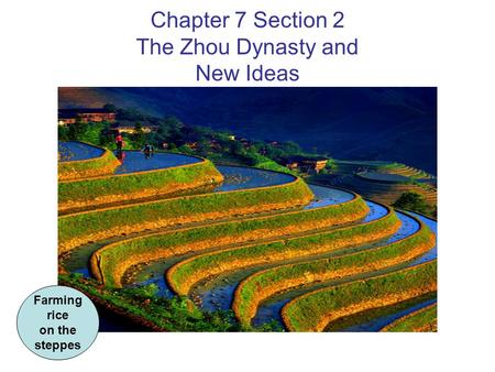 Chapter 7 Section 2 The Zhou Dynasty and New Ideas Farming rice on the steppes.