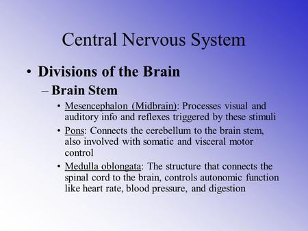 Central Nervous System Divisions of the Brain –Brain Stem Mesencephalon (Midbrain): Processes visual and auditory info and reflexes triggered by these.