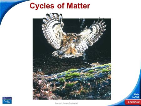 End Show Slide 1 of 33 Copyright Pearson Prentice Hall Cycles of Matter.