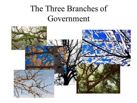 The Three Branches of Government. The Legislative Branch The Legislative Branch is called Congress Congress is made up of two houses Senate House of Representatives.