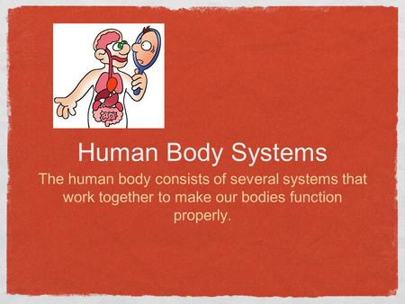 Human Body Systems The human body consists of several systems that work together to make our bodies function properly.